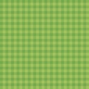kiwi green gingham