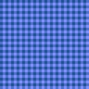 blue summer evening gingham