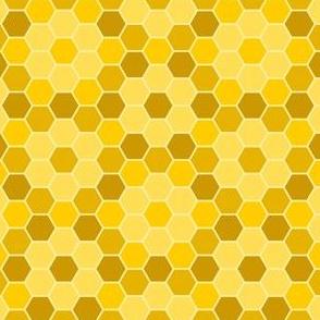 04748940 : R6V : honey