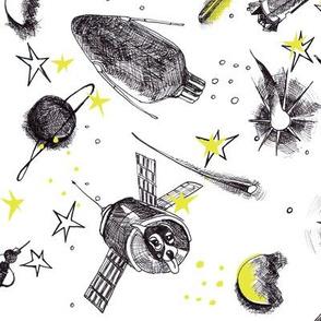 Sputnik's Journey in Space