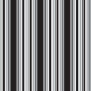 B & W Stripes
