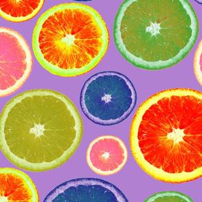 Oranges in Purple