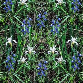 Flowery-mead-1