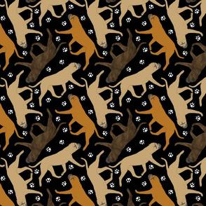 Trotting Bullmastiffs and paw prints - black