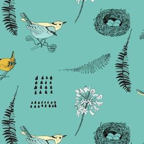 Birds Teal