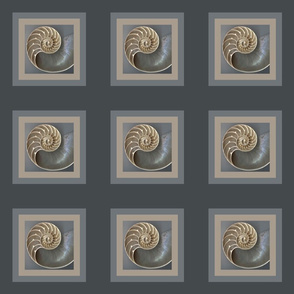 Nautilus for the quilter
