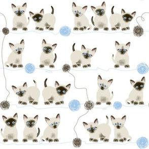 Siamese kittens and yarn balls
