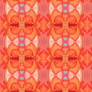 Red_Begonia Luxury