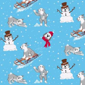 sheepie_snowday_copy