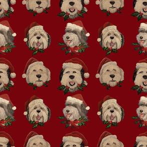 Santa_Sheepies_Burgandy