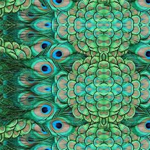 ©2011 peacock 1