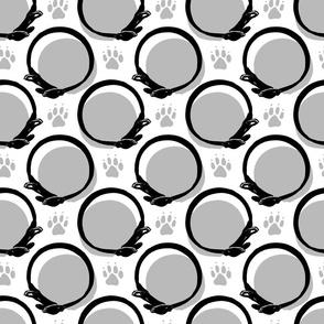 Collared portrait coordinate - gray