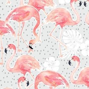 Tropicana Flamingo (grey)