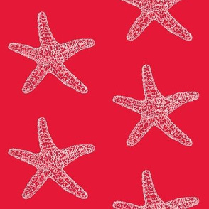 Starfish (seastar) white on red