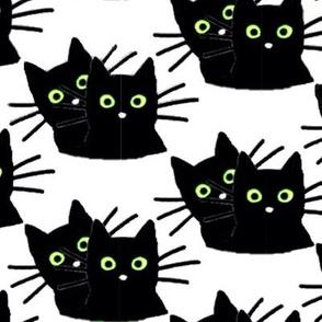 Cat Pals Green Eyes