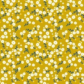 Autumn Yellow Daisy