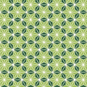 motif-6a-green
