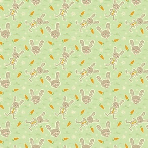 Bunny Rabbit Spring