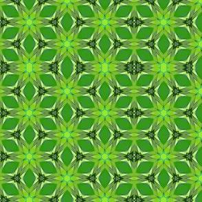 Lime Kaleidoscope