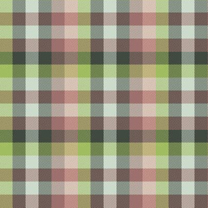 Madras plaid - terracotta and oolong