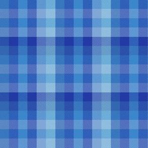serene blue Madras plaid