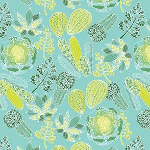 Succulents green blue