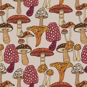 mushrooms light bk