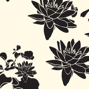 Water Lily prints Black & Cream