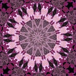 Pink_Raspberry_Circle