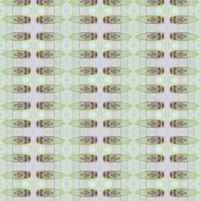 Cicadas (Lime)