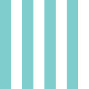 1 inch Stripe- Turquoise