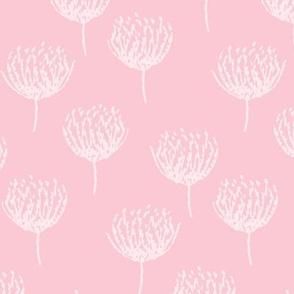 Soft Pink Bloom