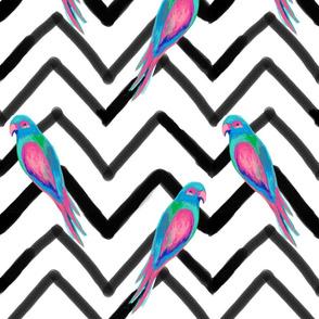 Chevron Painted Parrots