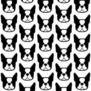 Boston Terrier fabric - Boston face silhouettes in black & white