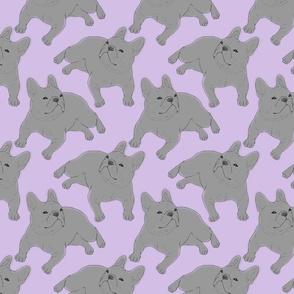 Tinted French Bulldog sketch - purple