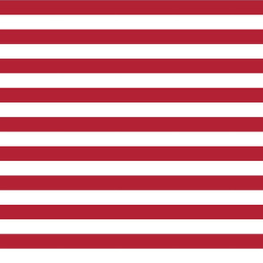 USA Flag Red and White Stripes
