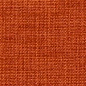 Avatar Aang Orange Shirt