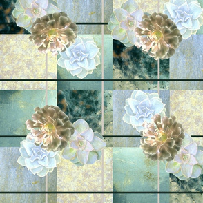 Succulents_3_Pistachio