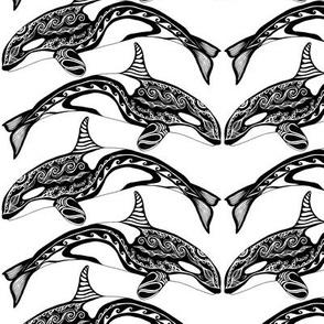 Orca Black n White