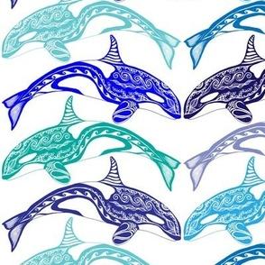 Orca Blues