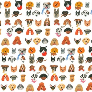 25 Dog Breeds