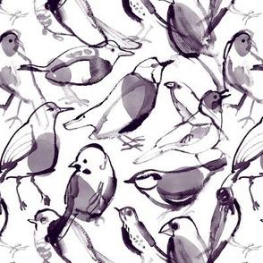 Birds - monochrom