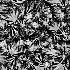 Indica Leaf Charcoal