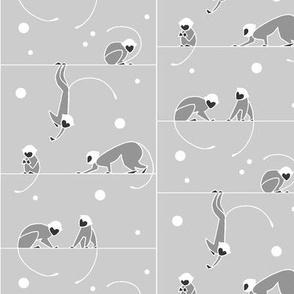 Monkey Winter Grey