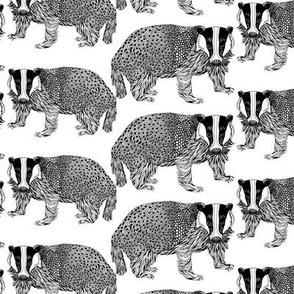 Badger Black n White