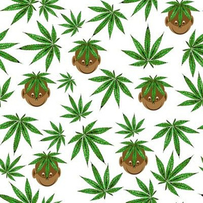 Marijuana Monkey Biz