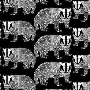 Badger White n Black