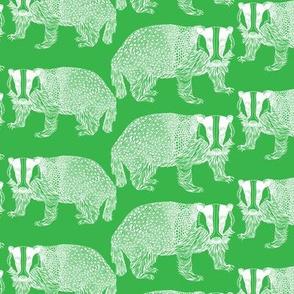Badger Green n White