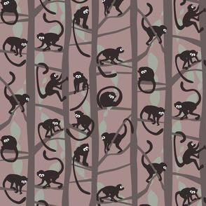 Monkeys maskerade