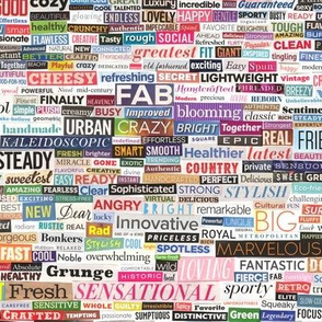 Ransom Note (Full-Color Adjectives & Adverbs) || magazine cut paper collage words phrases typography